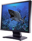 Sharks Terrors of the Deep 2.0 - Windows